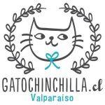 Gatochinchilla